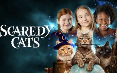 Scaredy Cats (2021) แมวเหมียวขี้กลัว